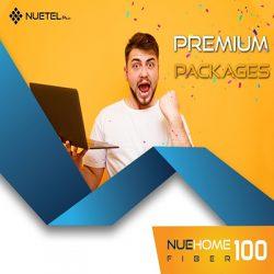 NueHome Fiber 100